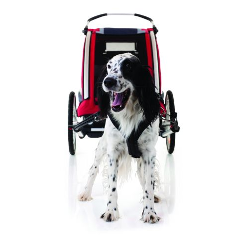 Nordic Cab EXPLORER - zestaw dla psa